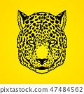 猎豹 图形 图标 47484562