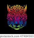 动物 猎豹 图形 47484563