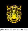 动物 猎豹 图形 47484564