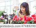 인테리어 관엽 식물 원예 47489290