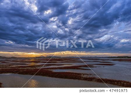 영종도,중구,인천시,일출,구름,흐림 47491975
