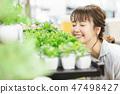 인테리어 관엽 식물 원예 47498427