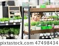 家庭中心植物園藝 47498434