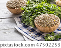Uncooked lentils in wooden bowles with parsley. 47502253