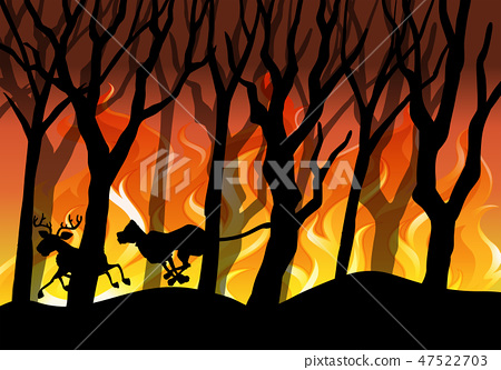 Silhouette wildfire forest background 47522703