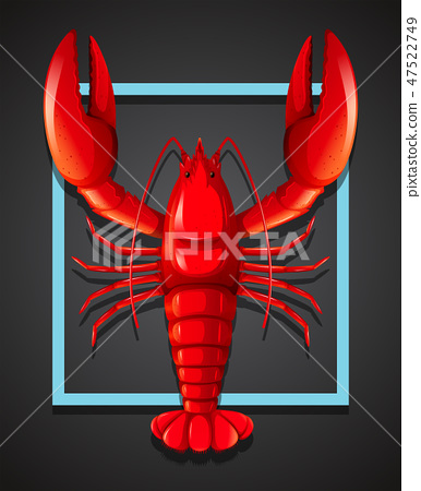 A red lobster on black template 47522749
