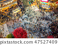 Shibuya Crossing from top view 47527409