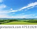 Landscape of blue sky plateau in summer of Hokkaido 47531928