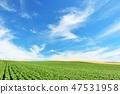 The land of Hokkaido blue sky 47531958