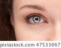 macro shot of beautiful female blue eye 47533667