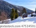 Beautiful winter mountain scenery 47534501