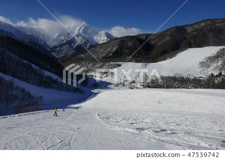 鹿島斯皮爾菲爾德從鹿島滑雪場的黑澤明滑雪場看到 47539742