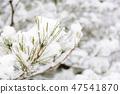 Winter scene of Kenrokuen 47541870