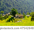 Himalayan landscape with beautiful mountain scene. 47542648
