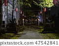 Shinjuku Hanazono Shrine Night view 47542841