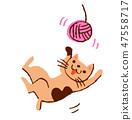 แมวเล่นกับเส้นด้าย 47558717