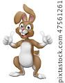兔子 兔 矢量 47561261