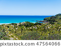 Landscape view over Cave beach in Jervis Bay 47564066