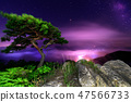 소나무가 있는 풍경 47566733