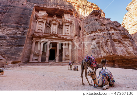 Treasury ancient architecture with camels, Petra 47567130