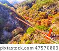 전라남도 순창군 강천산군립공원 가을 단풍과 출렁다리 47570803