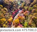 전라남도 순창군 강천산군립공원 가을 단풍 47570813
