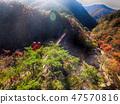 전라남도 순창군 강천산군립공원 가을 단풍과 출렁다리 47570816