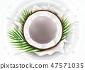 Broken coconut in milk splash 47571035