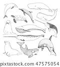 Sketch various sea creatures. 47575054