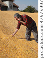 农民 农夫 男性 47575997