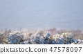 Shoreline of frozen lake with snowy trees 47578097