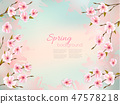 Spring nature background with a pink sakura 47578218