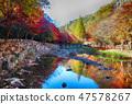 전라남도 강천산 군립공원의 조그만 다리와 개울 47578267