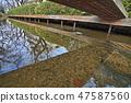 新幹線的水線為Niji Territory,風景在冬天 47587560