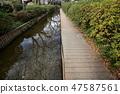 新幹線的水線為Niji Territory,風景在冬天 47587561