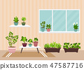 House indoor vector plants  47587716