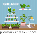 House indoor vector plants  47587721