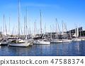 游艇 港口 码头 47588374