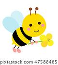 꿀벌과 유채 꽃의 일러스트 47588465