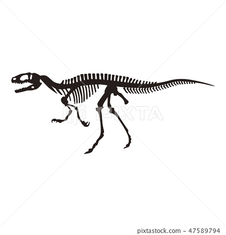 Dinosaur bones 47589794