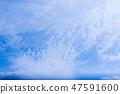 夏雲 47591600