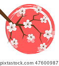 spring cherry blooming flowers white petals in a pink circle 47600987
