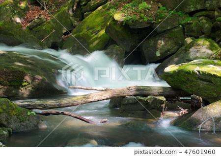 small stream among the rocks 47601960