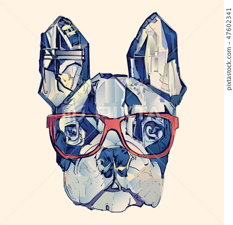 French bulldog in blue 47602341