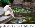 feeding koi fish 47605351