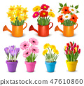 Big collection of spring and summer flowers 47610860