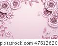 石竹花 粉色 背景 47612620