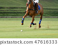 Polo Horse Player Riding To Control The Ball. 47616333