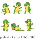 alligator, animal, cartoon 47616787