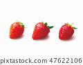 딸기 47622106